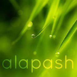 alapash logo