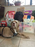 Donations to Integrative Pet Care